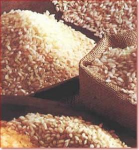 arroz-21