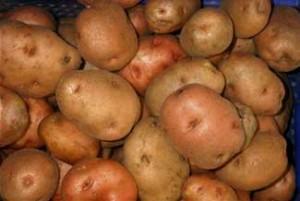 patata_vermella