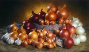 cebolla-variedades