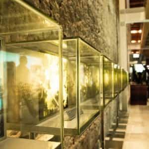 museo vino peñafiel