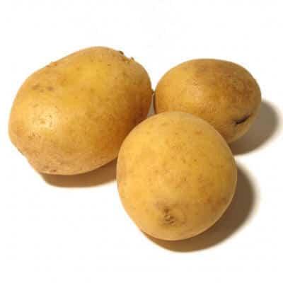 patata alemana