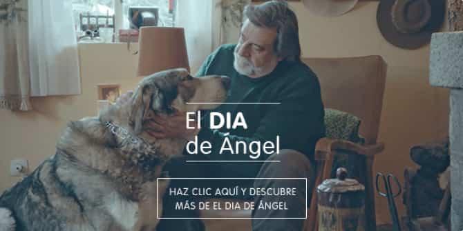 dia de angel dia