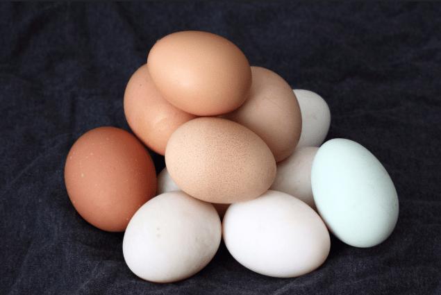 saber si los huevos son frescos