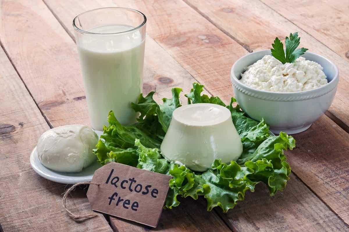 libre de lactosa