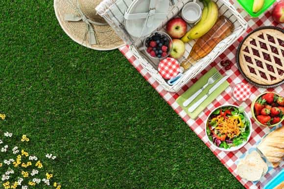 picnic sano seguro