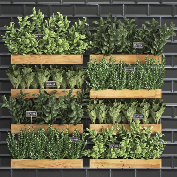 huerto vertical cocina