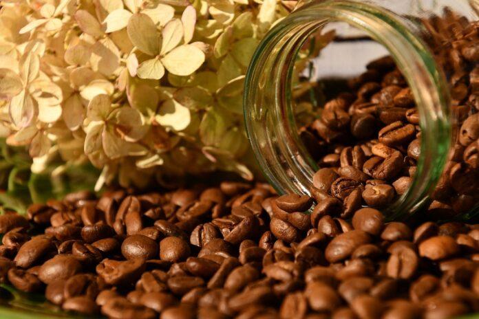 cafe en grano 2
