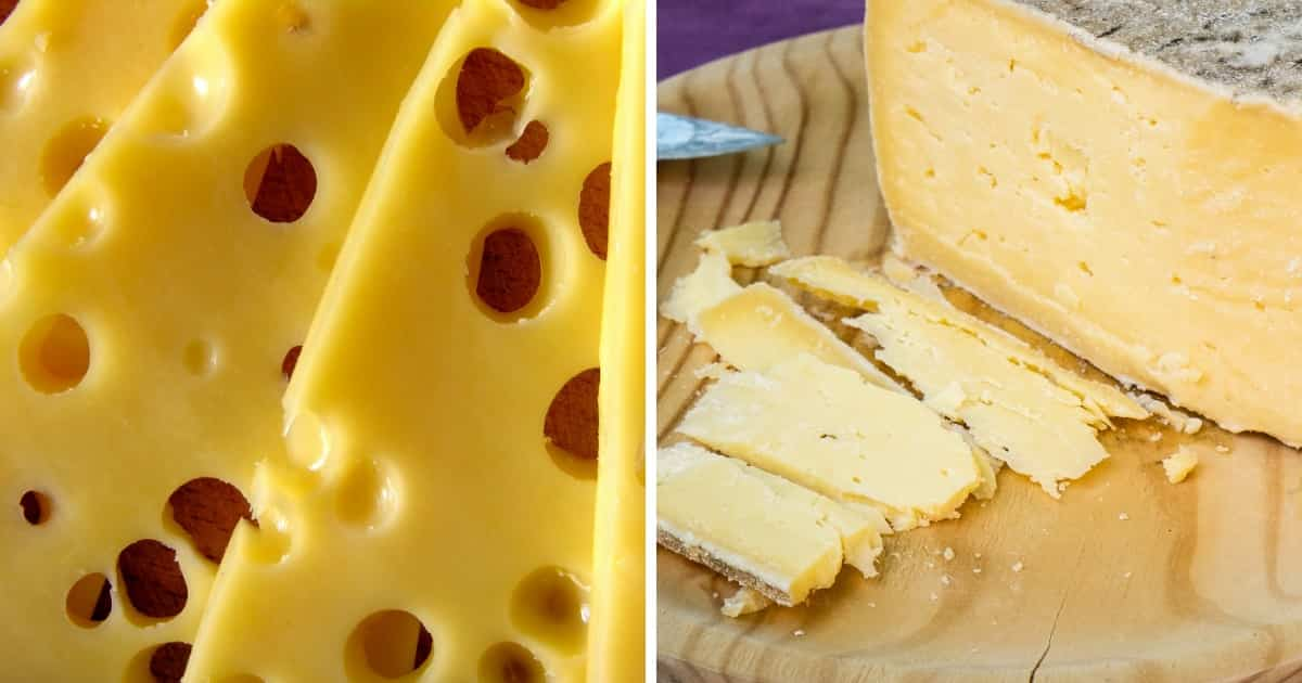 textura quesos